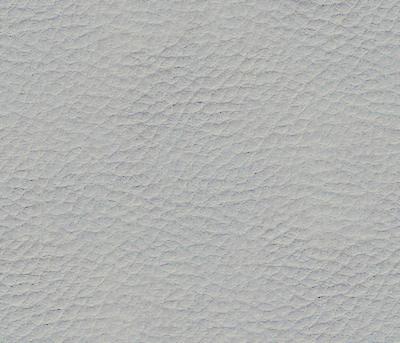 Large Leather - Transparent Textures