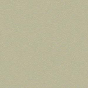 Leather - Transparent Textures