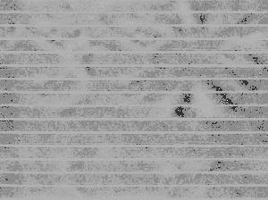 Lined Paper - Transparent Textures