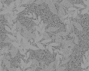 Xv - Transparent Textures
